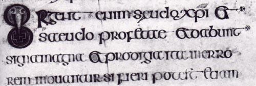 Carolingian Scripts
