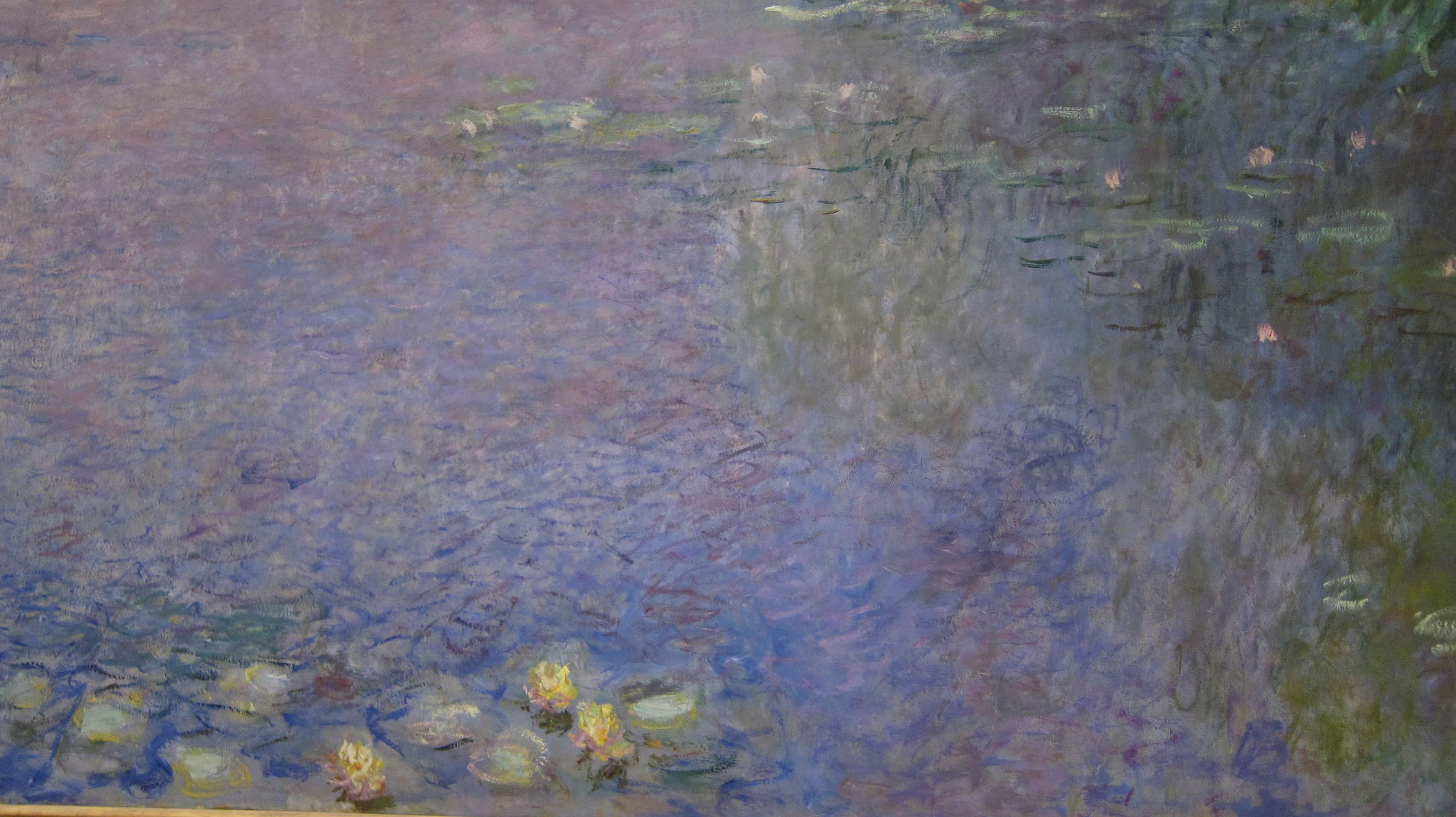 a comparison of de koonings lily pond and monets water lilies Claude monet was a famous french painter the water lilies found in the pond had a mark rothko and willem de kooning since 1980, monet's giverny home.