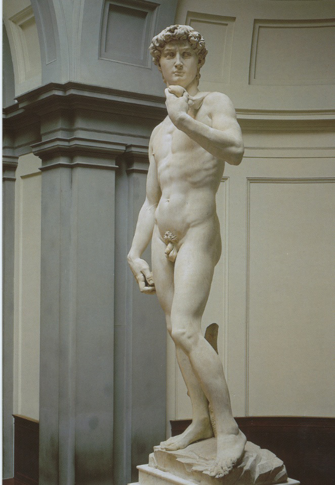 michelangelos sculpture david essay Video: comparing michelangelo's and donatello's statue of david in this lesson  his bronze sculpture of david features a slender.