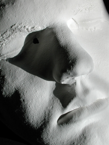 Making A Face Mold