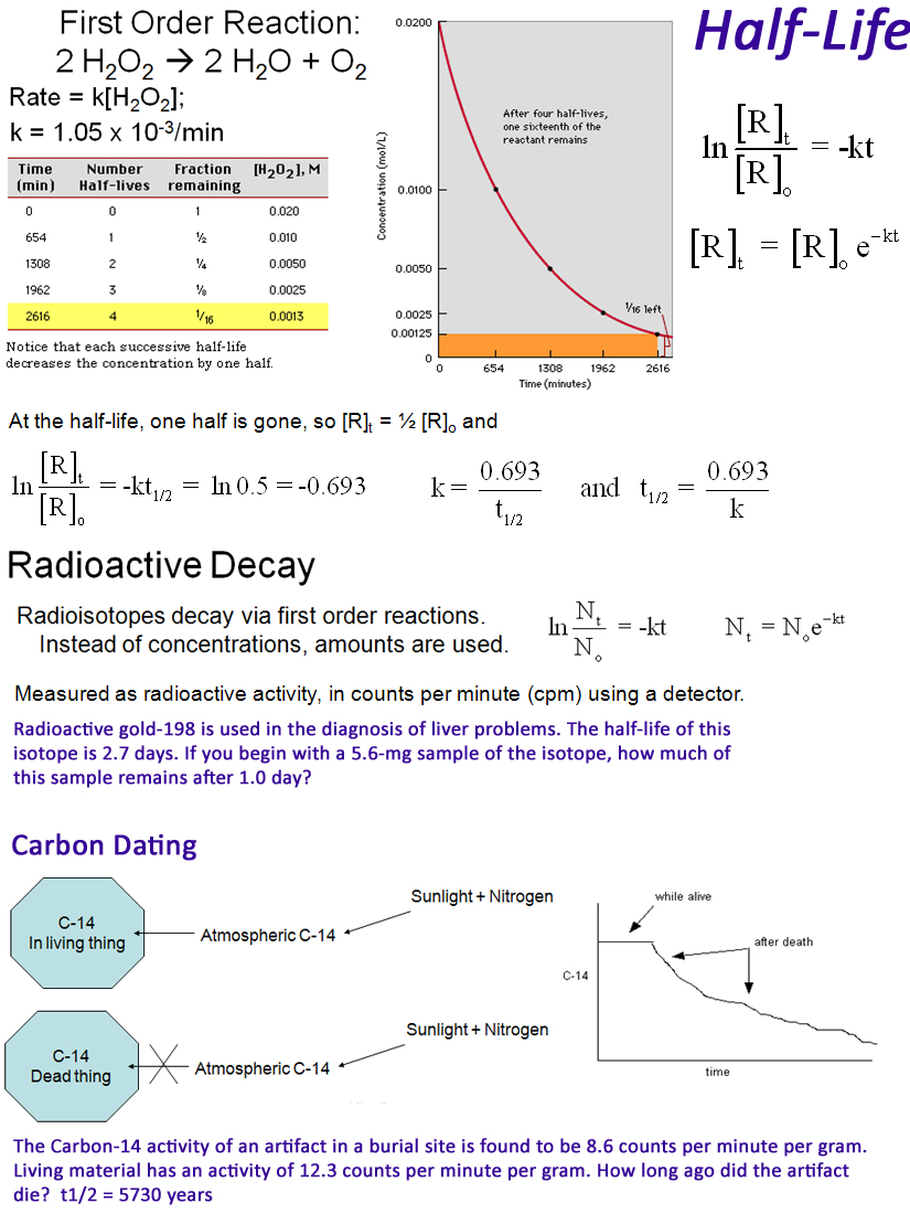 Carbon 14 dating exponential equation word 5